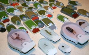 吳思嶔,《墓園》,2009,透明樹脂、昆蟲屍體,尺寸不一 (曾鈴雅攝)
