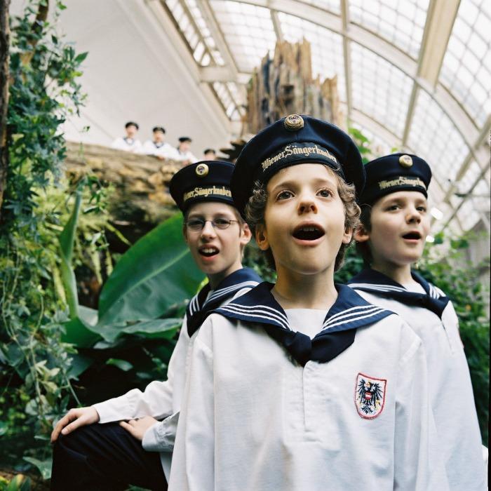 維也納少年合唱團(傳大藝術)